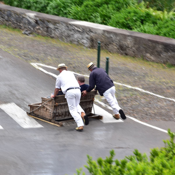 sledges ride monte madeira