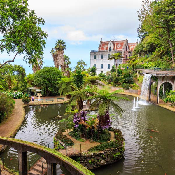 Tropical Gardens in Monte funchal